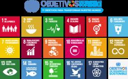 Agenda 2020 ODS