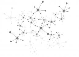 Network b&n